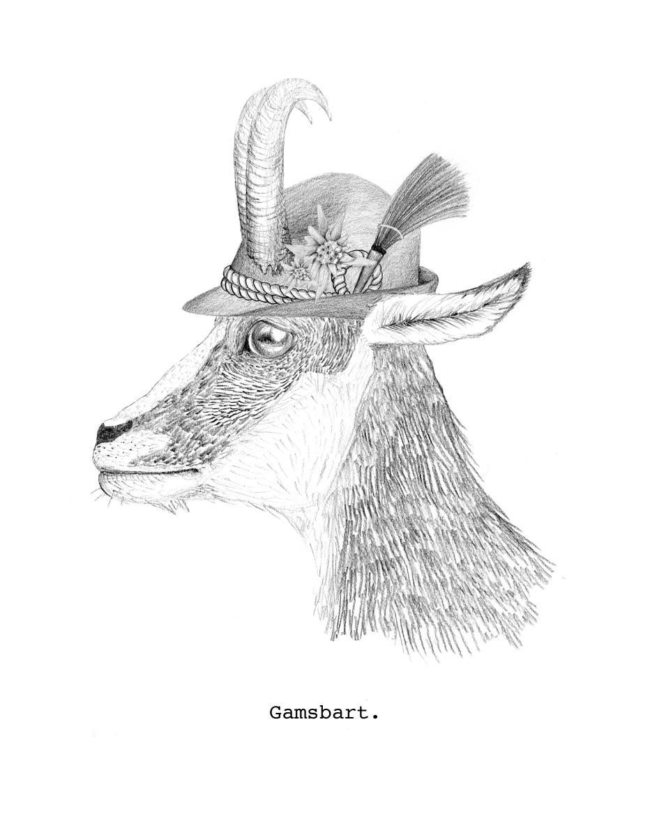 Gamsbart