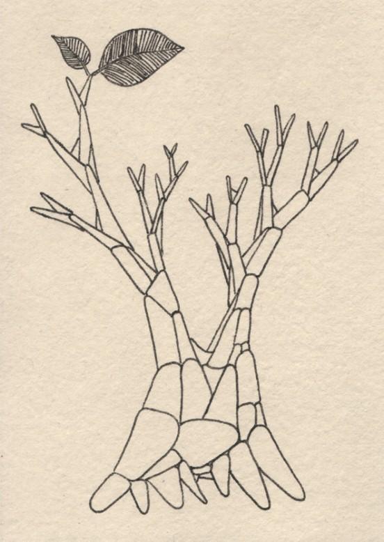 Baum_Beitragsbild